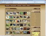 Seite neuebild.com