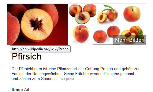 Knowledge-Graph Top-Bild: Pfirsich