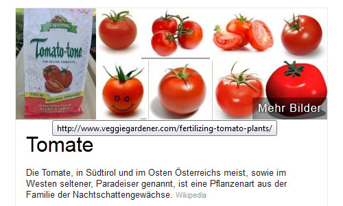 Knowledge-Graph Top-Bild: Tomate