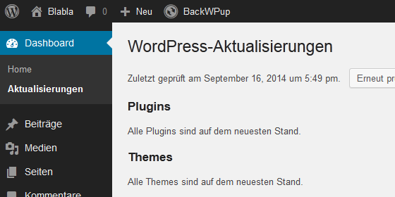 Strato-AppWizard - kein WP-Update