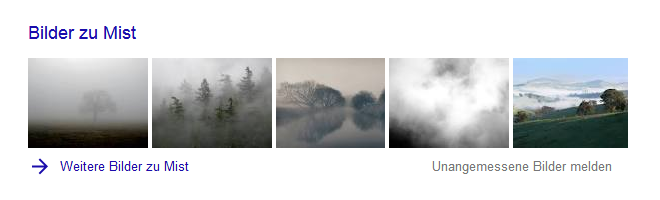 Google-Suche: Mist (Bilder-Box)