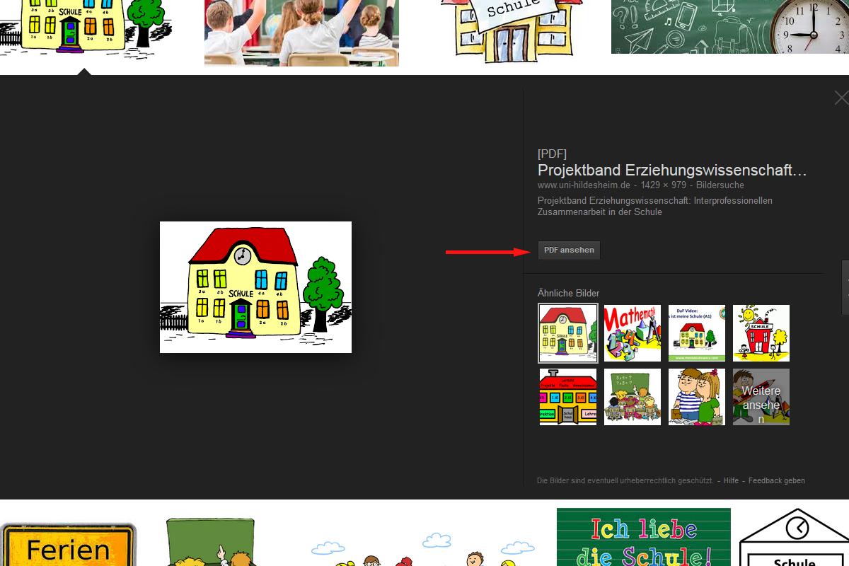 Google-Bildersuche: PDF-Datei